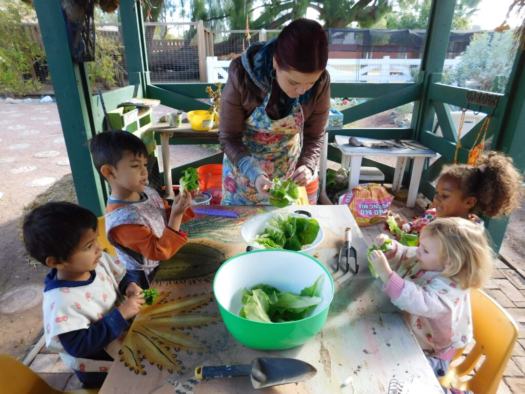 Preschoolers learn gardening outdoors at Montessori Center School