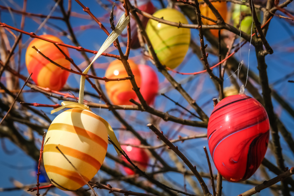 colorful easter eggs hanging in a tree