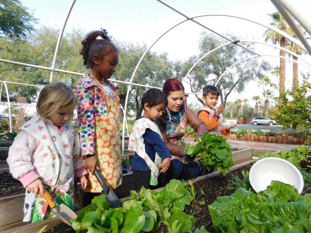 Preschoolers in Montessori Center School garden