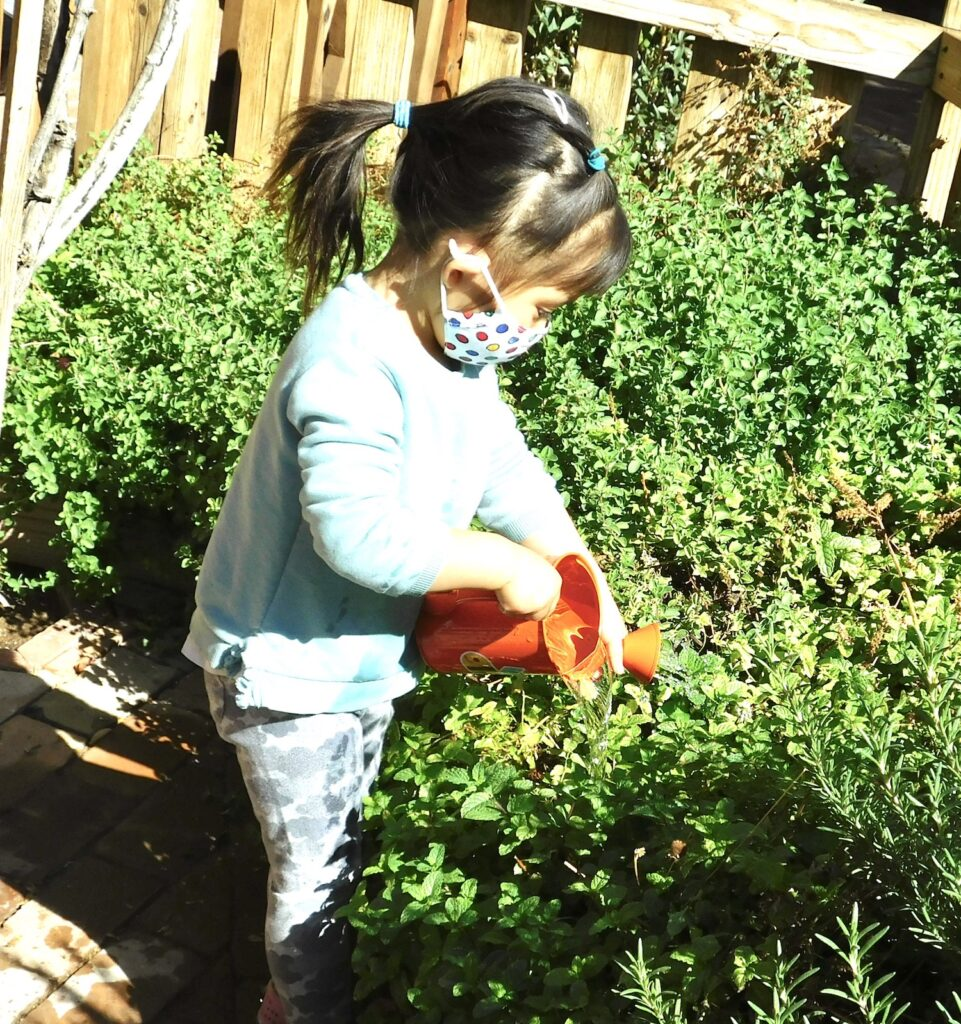 Toddler watering plants as part of Montessori for toddlers
