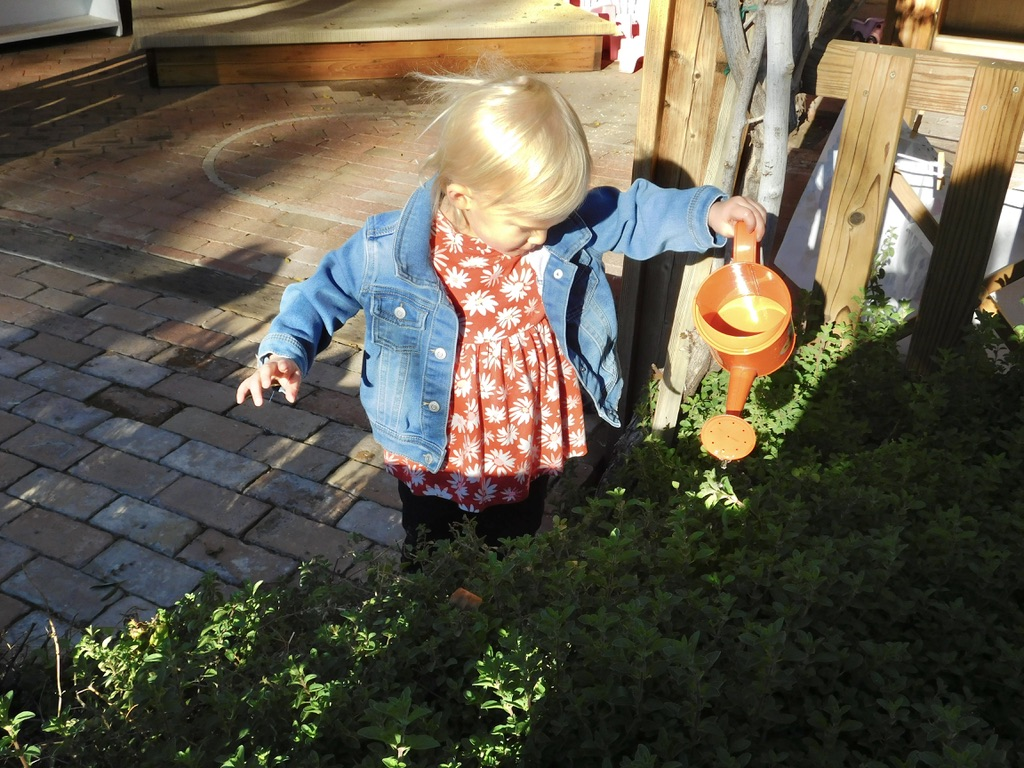 young child watering plants showing one of the benefits of Montessori for toddlers